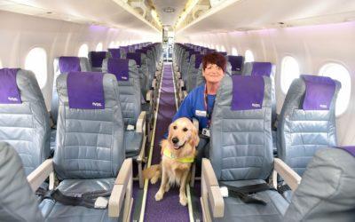 cane-aeroplano